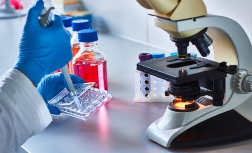 Successor to PD-1 inhibitors the focus of cancer immunotherapy