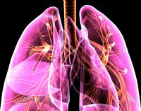 Tarloxitinib puts tumour-seeking tail on anti-EGFR drug to target lung cancer