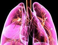 Tarloxitinib puts tumour-seeking tail on anti-EGFR drug to target lung cancer
